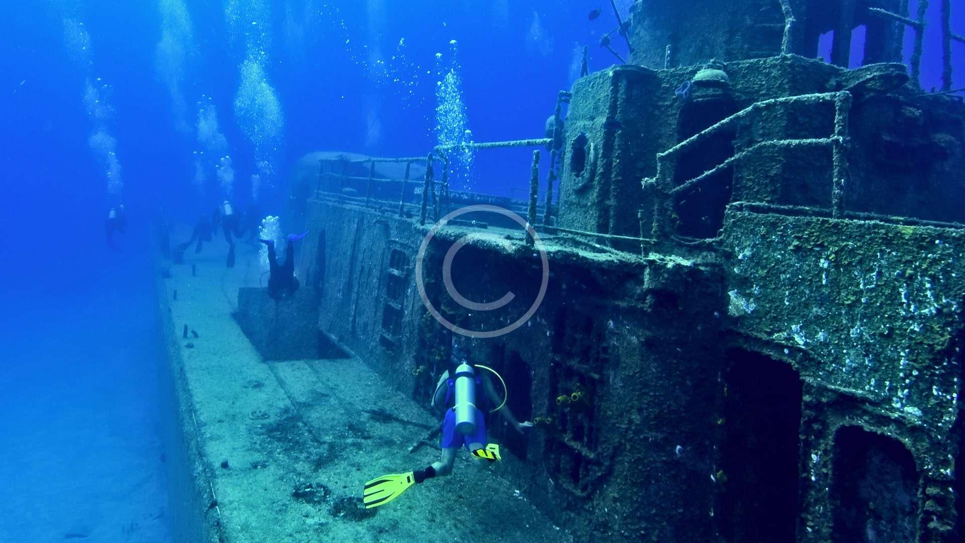 Underwater Naturalist